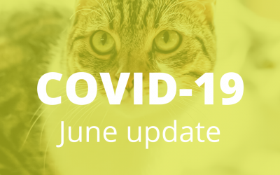 How we are keeping safe from the Coronavirus in June
