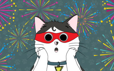 Keep Your Cats Feline Relaxed this Fireworks Season